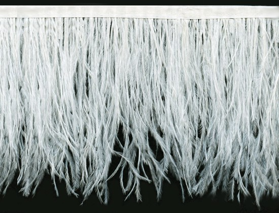 "Ostrich Feather Trim in ""Off White"" - Yard(s) - Product Image"
