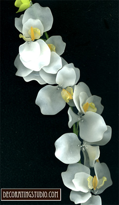 white acrylic orchid stem