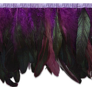 Long Multi Colored Ombre Feather Fringe