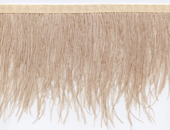 ostrich feather trim in champagne