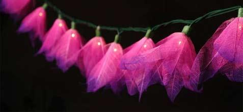"""Fuchsia"" Bodhi Leaf Flower String Lights - 9' length - Product Image"