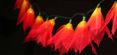 fire orange flower string lights for home decor and wedding decorations