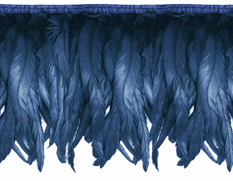 iridescent midnight feather fringe