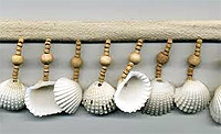sea shell beaded trim